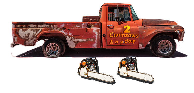 Professional Tree service vs 2 chainsaws and a pickup.png